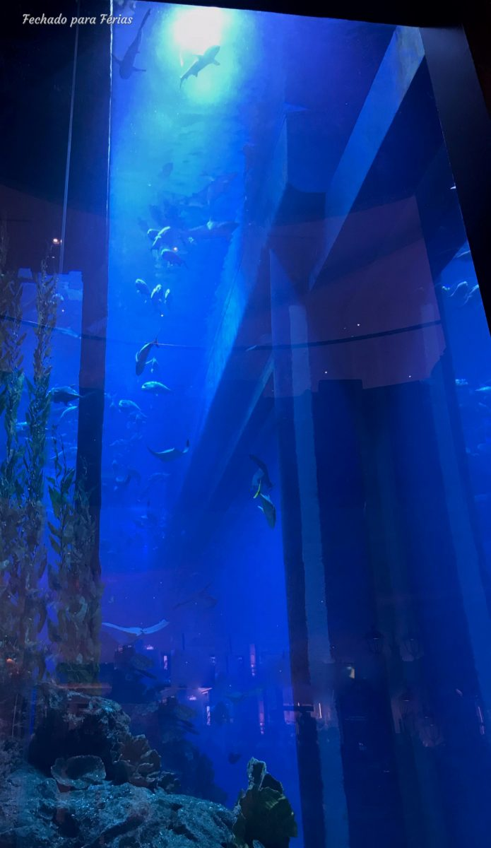 Vista geral do Dubai Aquarium